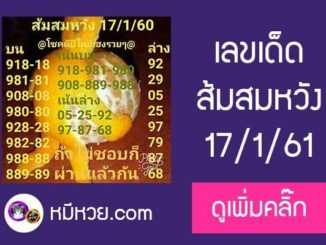 เลขเด็ด ส้มสมหวัง17/1/61