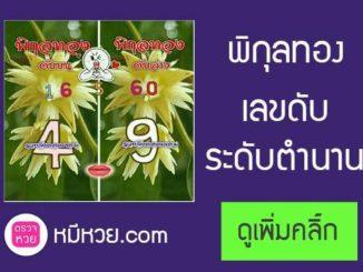 เลขดับพิกุลทอง1/6/2560 เลขดับระดับตำนาน