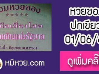 หวยซองปกเขียว1/6/61